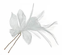 Shop Hair Accessories - Flowers - Feathers-  Swarovski Crystals  | Price - $65.00