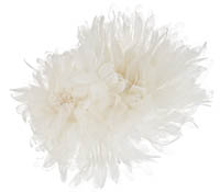 Shop Hair Accessories - Flowers - Feathers-  Swarovski Crystals  | Price - $200.00