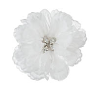 Shop Hair Accessories - Flowers - Feathers-  Swarovski Crystals  | Price - $175.00