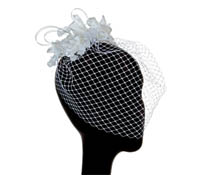 Shop Hair Accessories - Cage Veils -  Swarovski Crystals | Price - $300.00